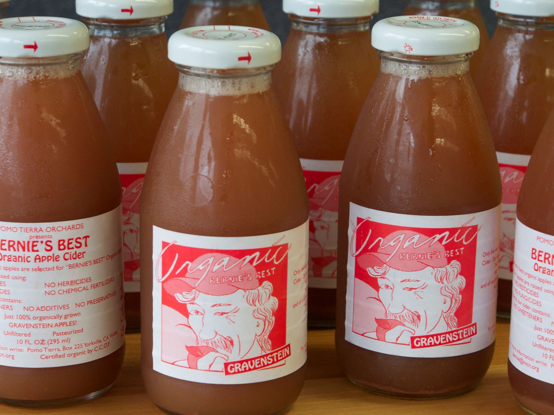 Picture of Bernie's Best Apple Cider 10 oz.