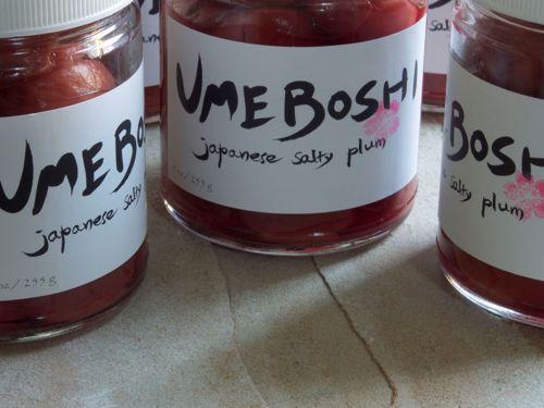 Picture of Yume Boshi Umeboshi Salty Plums 9oz.
