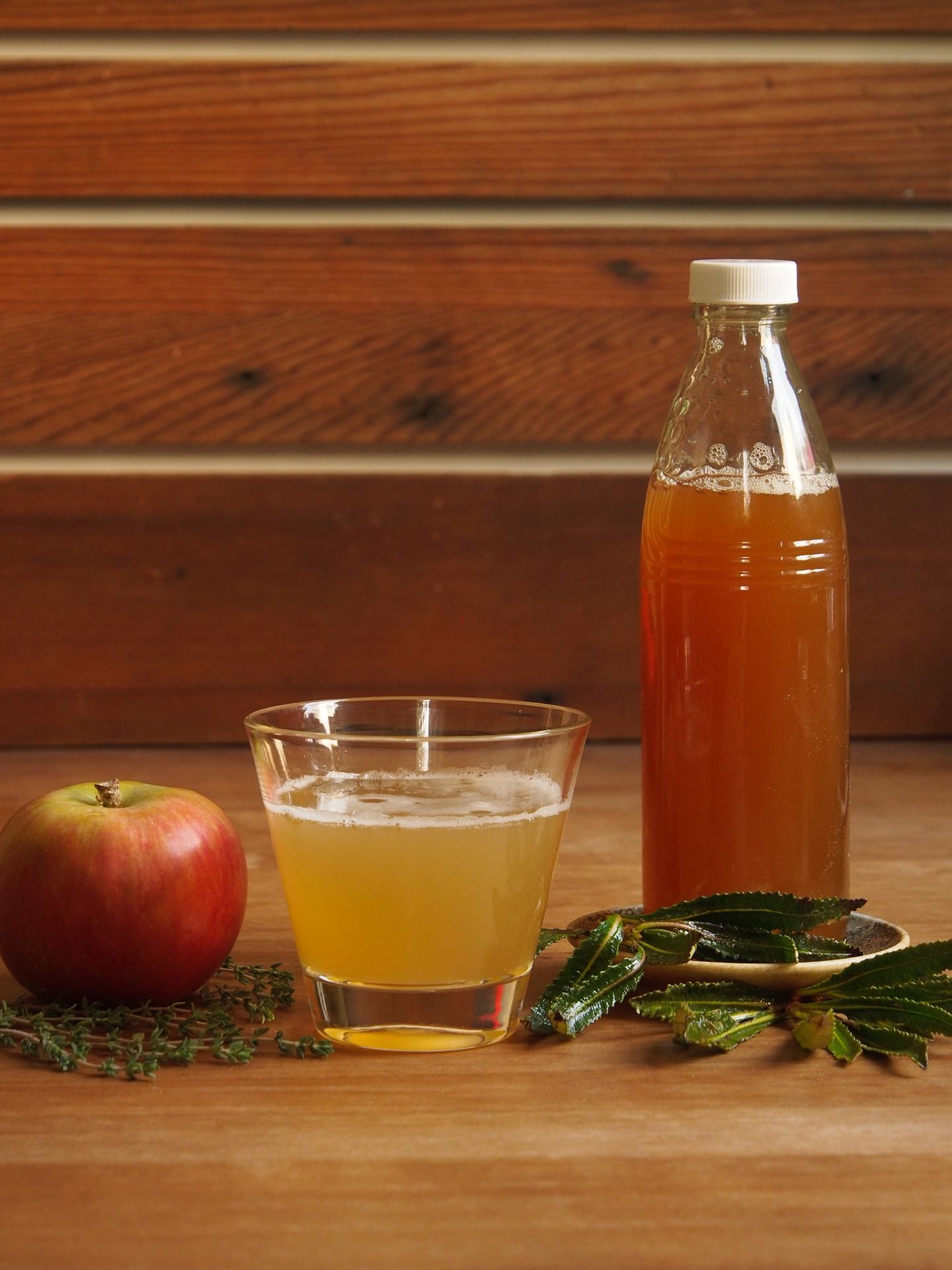 "Picture of ""Healthy Lungs"" Apple Herb Shrub"