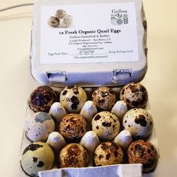 Picture of Gefion Gamebirds Organic Quail Eggs