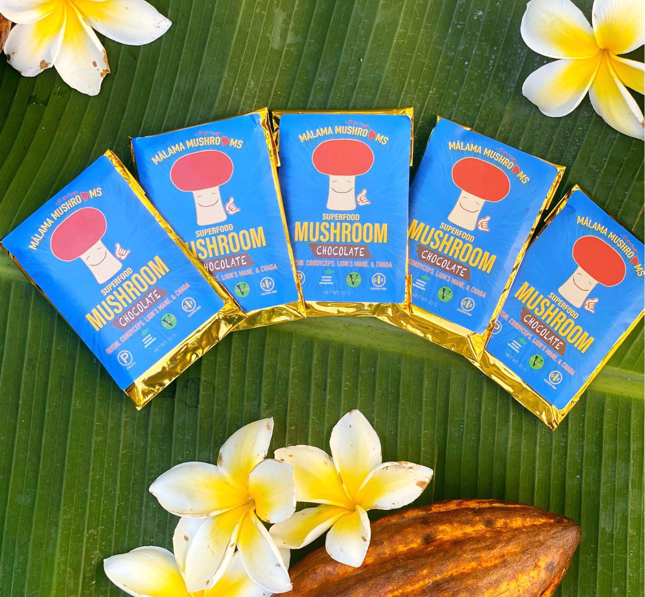 Picture of Malama Mushroom Chocolate